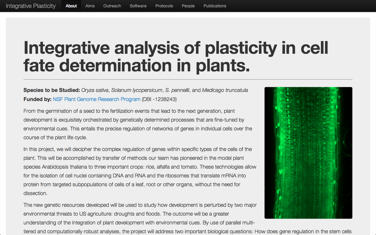 Screenshot of Plant Plasticity site